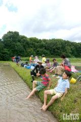 まだ植えていない田の水で泥を落とす