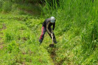水路の草刈り・清掃2