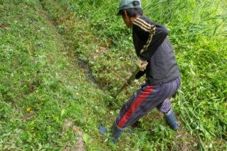 刈った草で詰まらないように除去