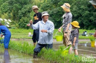 米の植え方を指南