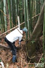 竹の切り出しから