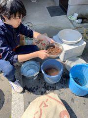 お米づくりの前の3つの作業
