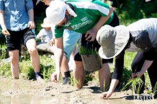 素足で感じる泥はいかが?
