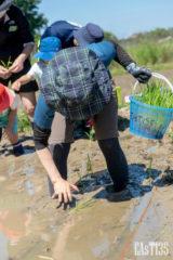 泥に足を取られ