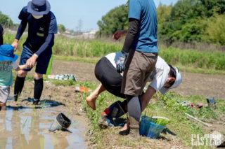 泥に靴を盗られ