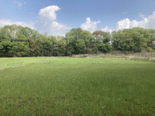 土壌準備2021